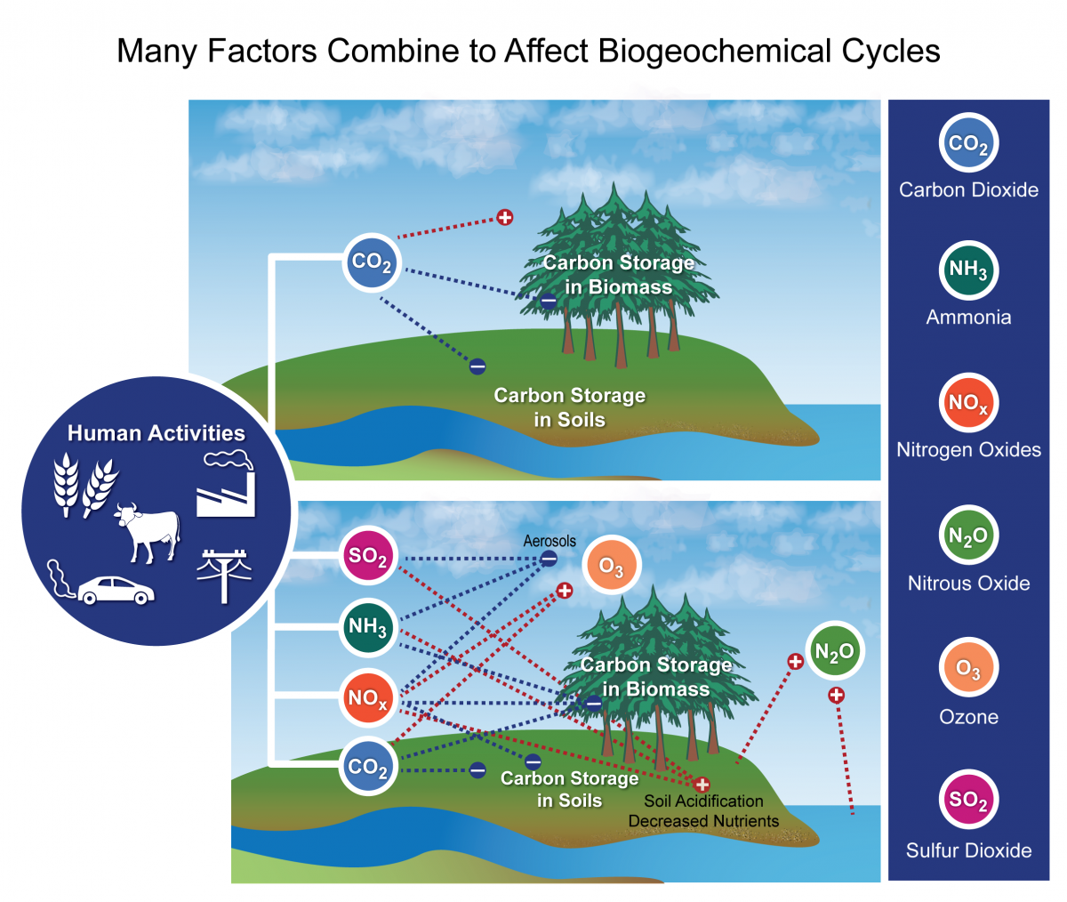 Top panel shows the impact of the alteration of the carbon cycle alone on  radiative forcing
