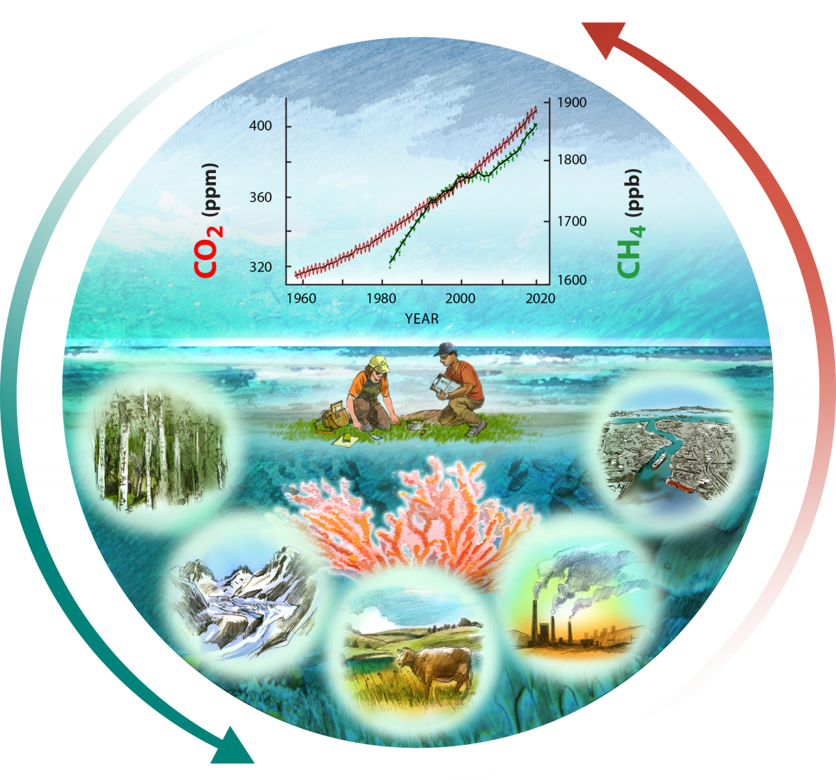 Report Cover Figure: North American carbon cycling illustration, courtesy Ron Oden, University of Nevada, Reno.  This graphic represents the dynamic nature of carbon stocks and fluxes in the United States, Canada, and Mexico described in the Second State of the Carbon Cycle Report.