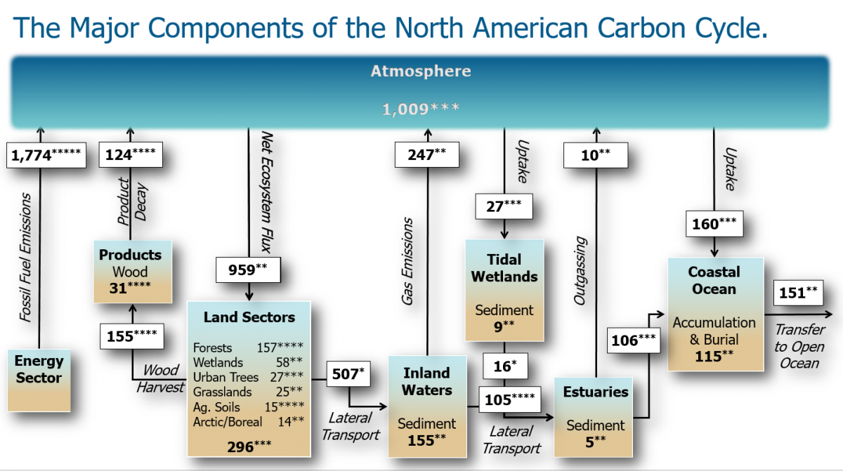 Carbon Budget of North America Animation